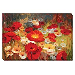 Meadow Poppies I by Lucas Santini Premium Gallery-Wrapped Canvas Giclee Art (Ready to Hang)