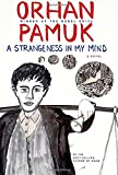 A Strangeness in My Mind: A novel