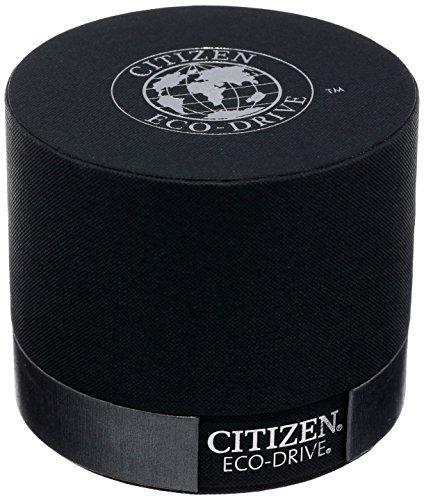 怎能无女款?优雅白盘蓝针,西铁城Citizen EW1568-04A 光动能女表图片