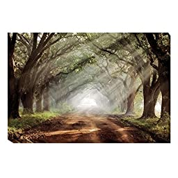 Evergreen Plantation by Mike Jones Custom Gallery-Wrapped Canvas Giclee Art (Ready to Hang) (Oversize)