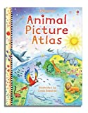 Hazel Maskell Animal Picture Atlas