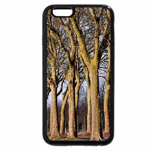 iPhone 6S / iPhone 6 Case (Black) Chateau de Vaux le Vicomte