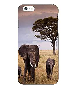 Make My Print Elephant Printed Multicolor Hard Back Cover For Iphone 6 Plus