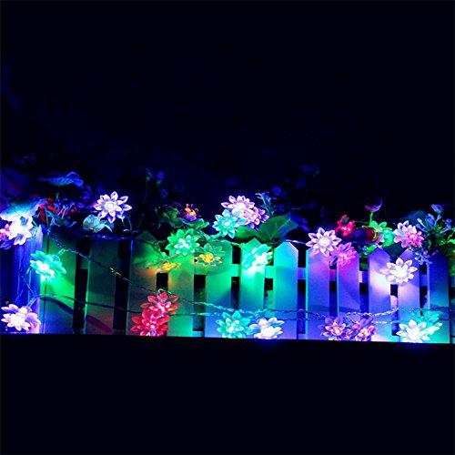 SAMGU LED Weihnachtslichterkette Batteriebetriebene Lichterkette für Weihnachten 40 LED Birnen Doppelstock Lotus RGB Perlen