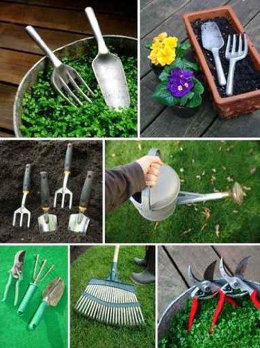 Gardening - 18