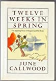 Twelve Weeks in Spring: The Inspiring Story of Margaret and Her Team (0886191157) by June Callwood
