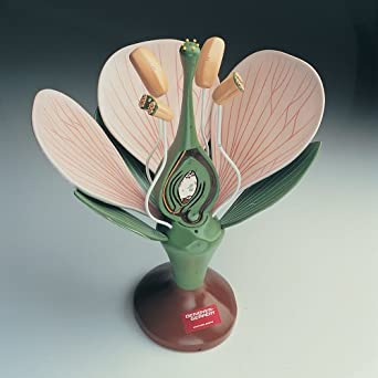 Denoyer-Geppert Giant Dicot Flower Model