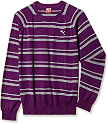 Puma Men's Cotton Sweater (4053985467388)