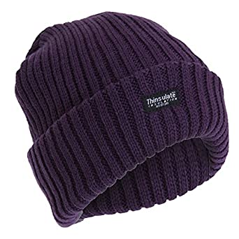FLOSO® Ladies/Womens Chunky Knit Thermal Thinsulate Winter/Ski Hat (3M 40g) (One Size) (Plum)
