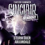 Image de Sturm über Arbordale (Sinclair Academy 4)