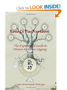 Basic Qi Dao Workbook: The Experiential Guide To Tibetan Shamanic Qigong [Paperback] — by Lama Somananda Tantrapa