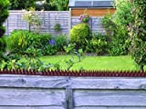 FENCEGUARD PLASTIC FENCE SPIKES BROWN X 6