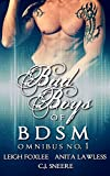 img - for Bad Boys of BDSM Omnibus No. 1 book / textbook / text book