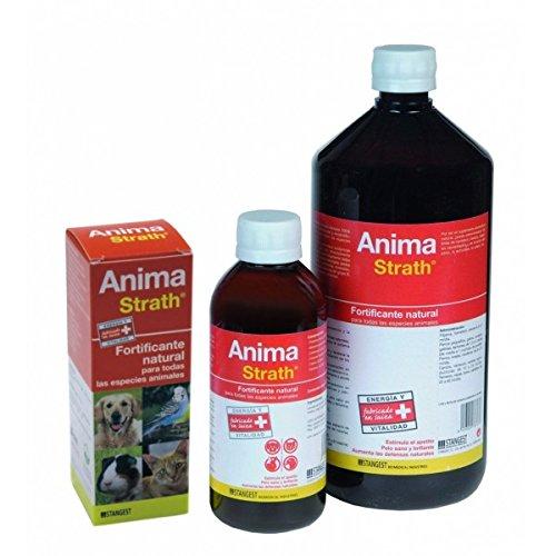 anima-strath-supplement-fortifiant-et-reconstituant-1000-ml