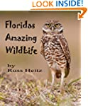 Florida's Amazing Wildlife