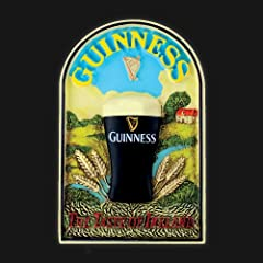Guinness Resin Magnet Toucan Taste of Ireland