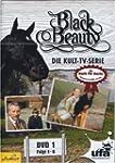 Black Beauty TV-Serie 1 [Import allem...
