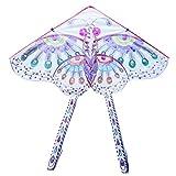 Pattern Kite 80*48cm DIY Kite Hand Drawing Kite Butterfly Kites