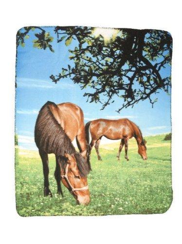 Gift Corral Blanket 2 Horses/Pasture