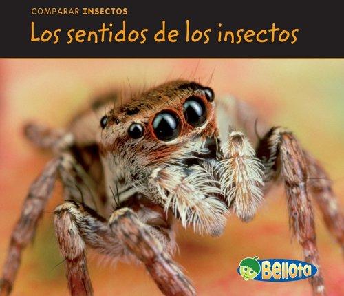 Los Sentidos de los Insectos = Bug Senses (Bellota)