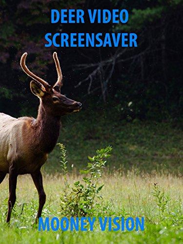 Deer Video Screensaver Set to Music