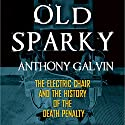 Old Sparky: The Electric Chair and the History of the Death Penalty Audiobook by Anthony Galvin Narrated by Jack Reynolds