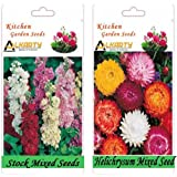 Alkarty Stock Mixed And Helichrysum Mixed Seeds Pack Of 20 (Winter)