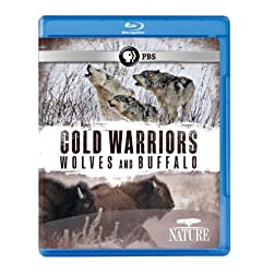 Nature: Cold Warriors - Wolves & Buffalos [Blu-ray]