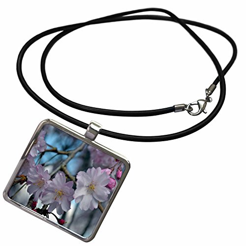 3dRose WhiteOak Photography Floral Prints - Cherry Blossom Tree - Necklace With Rectangle Pendant (ncl_45340_1)