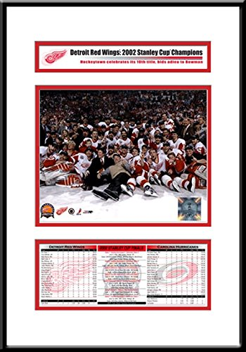 2002 NHL Stanley Cup Champions Frame - Detroit Red Wings
