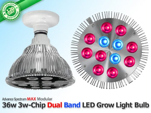 36 Watt Advanced Spectrum MAX 3w-Chip LED Grow Bulb 400w 600w full spectrum led grow light grow lamp greenhouse hydroponic systems best for medicinal plants growth flowering