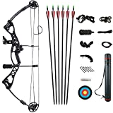 ATROPOS-106 黒、右&左利きボウ、アーチェリー複合ボウ狩猟弓セット、張力40-60lbs