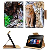Lion Stones Eyes Predator Big Cat Amazon Kindle Fire HD 7 [2012 Version Only September 14, 2012] Flip Case Stand Magnetic Cover Open Ports Customized Made to Order Support Ready Premium Deluxe Pu Leather 7 11/16 Inch (195mm) X 5 11/16 Inch (145mm) X 11/16 Inch (17mm) Liil Professional Kindle_fire Cases Kindle7 Accessories Build Model Graphic Background Covers Designed Model Folio Sleeve HD Template Designed Wallpaper Photo Jacket Luxury Protector