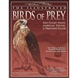 The Illustrated Birds of Prey: Red-Tailed Hawk, American Kestrel & Peregrine Falcon: The Ultimate Reference Guide...