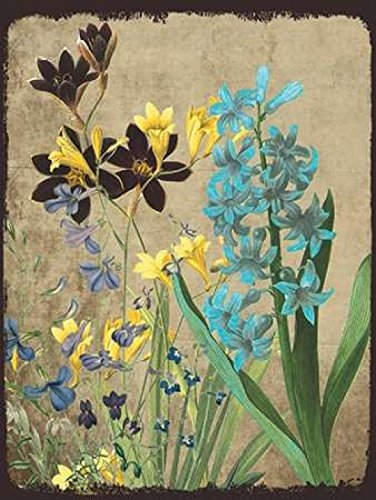 sheldon-lewis-fresh-meadow-bloom-kunstdruck-5588-x-7112-cm