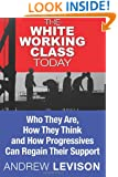 The White Working Class Today: Who They Are, How They Think and How Progressives Can Regain Their Support