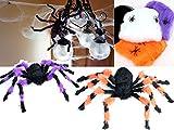 恐怖の館蜘蛛の巣小蜘蛛2匹付き巨大特大蜘蛛75cmスパイダーウェブハロウィン部屋玄関飾り装飾デコレーションお化け屋敷