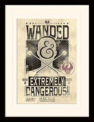 Animali Fantastici E Dove Trovarli - Armato Con Bacchetta Magica, Strapericoloso Poster Da Collezione Incorniciato (40 x 30cm)