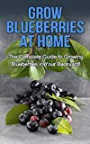 Grow Blueberries at Home: The complete guide to growing blueberries in your backyard!