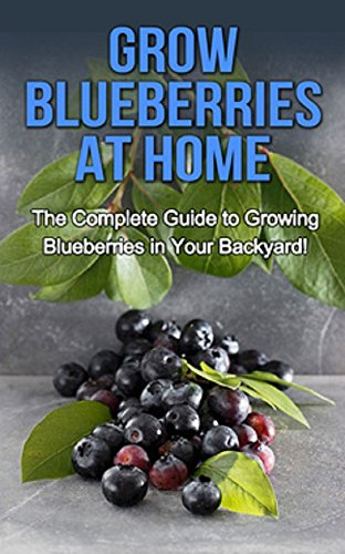 Free Kindle Book : Grow Blueberries at Home: The complete guide to growing blueberries in your backyard!