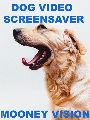 Dog Video Screensaver Set To Music