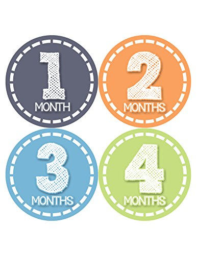 Months in Motion 369 Monthly Baby Stickers Baby Boy Months 1-12 Milestone Photo
