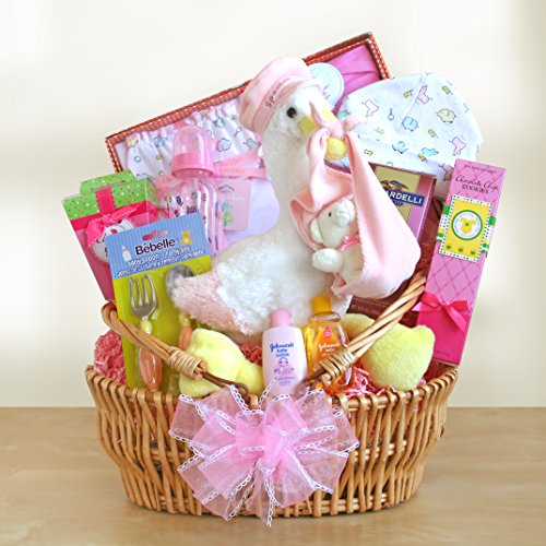 Stork Special Delivery Baby Girl Gift Basket front-667568
