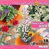 MIXA IMAGE LIBRARY Vol.18 装いの花たち
