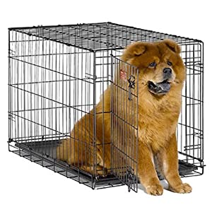 iCrates 36 x 23 Single Door w/divider panel by 1-800-petmeds from 1800PetMeds