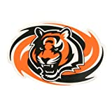 Cincinnati Bengals Large Sports Magnet (Measures 11
