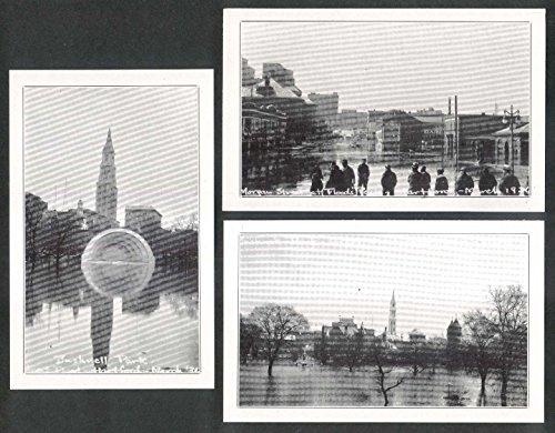 Great Flood Hartford 1936 Set Of 9 Postcards: Travelers Tower Bushnell Park ++