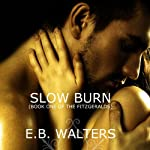 Slow Burn (       UNABRIDGED) by E. B. Walters Narrated by Nina Naughton
