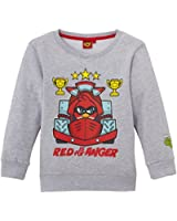 Angry Birds - Sweat-shirt - Garçon