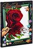 Red Rose colour by numbers Schipper